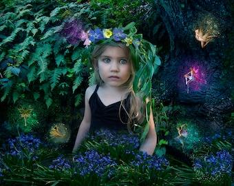 Fairy Overlays