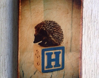 Vintage Toy H is for Hedgehog Art/Photo - Wall Art 4x6