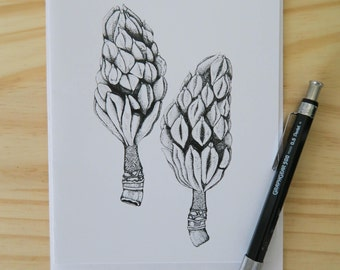 Twin Seed Pods Notecard