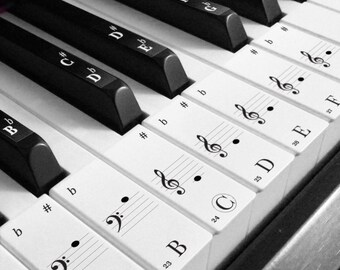 Keyboard / Piano Transparent Stickers for 88 Keys - White keys + Black keys (Style A)