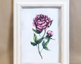 Peony painting, flower art, floral art, peony art print, vintage art, art print, wall decor, wall art, original watercolour, handpainted art