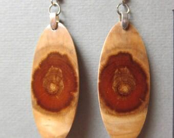 Norfolk Island Pine Earrings Exotic Wood Dangle ExoticWoodJewelryAnd handcrafted ecofriendly