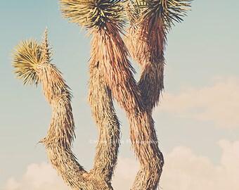 desert decor, yucca tree print, Joshua Tree photography, Southwestern bedroom art, California nursery wall art, desert photo, Coachella