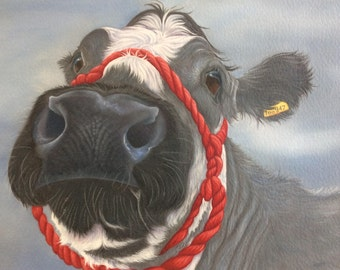 "british blue cow painting ""Alice"""