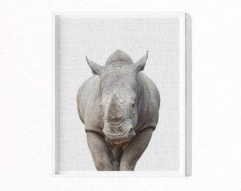 Rhinoceros Print, Rhino Print, Safari Animal Wall Art,  Kids Room Decor, Nursery Animal Print, Printable Poster, Instant Download, #447