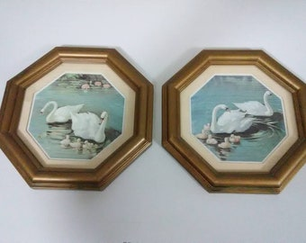 Vintage late 70's or early 80's Home interior swan pictures. Set of 2. Behind glass.