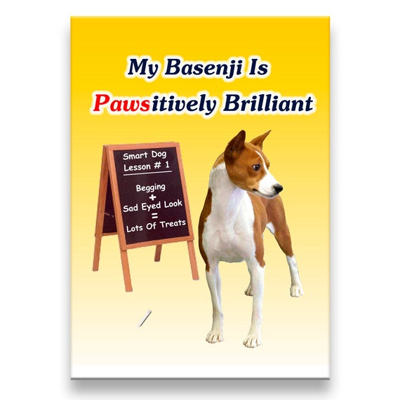 Basenji Pawsitively Brilliant Fridge Magnet No 1