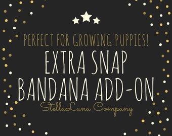 Extra Snap Add-On
