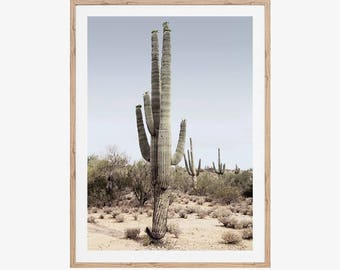 Desert Print, Printable Art, Cactus Art Print, Succulents, Wall Art, Cactus Photography, Arizona, Desert Art, Cacti, Desert Landscape