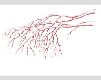 original drawing A4 tree branch red ball point pen