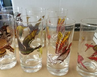 Vintage Turkey & Wild Bird Game Glasses Set of 7