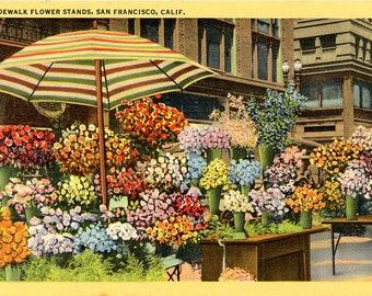 San Francisco California Sidewalk Flower Stands Vintage Postcard