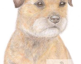 Bertie the Border Terrier - Blank Card