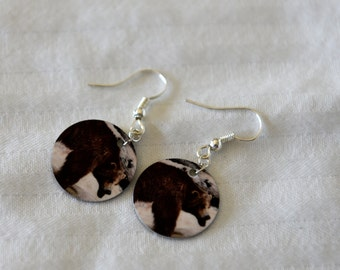 Lazy Bear Sublimation Photo Earrings,Origanal Photography, Bear on aluminum circle, Bear Laying Photography,Wearable Art,fishhook,Brown Bear