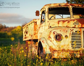 For Him VINTAGE TRUCK Photography retro old Bedford Classic Rustic Landscape (LARGE) wall art green fields yellow flowers MuddpuppieDesigns