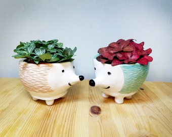 Pink and SkyBlue Hetchhog Handmade Ceramic Pots