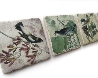 Bird Coasters Set of 4, Vintage Bird Tile Coaster Set, Nature Coasters, Housewarming Gift, Natural Coasters, Drink Coasters for Home Decor