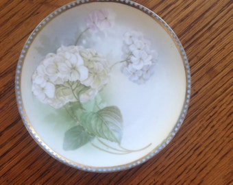 Antique Regina Ware Germany Bread and Butter Plate Hand Painted with Hydrangeas