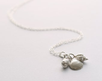 Silver Shell Necklace, shell necklace, nature jewellery, beach jewellery