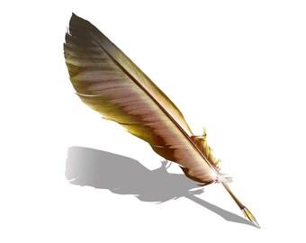 Public Relations Copywriting: PR Writer, Content Writing, Marketing, Writing Services, Business Branding, Brand Development, Writing Help