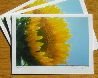 Sunflower, Photo Art Card