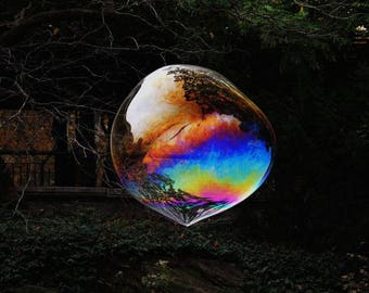 The Bubble - Bubble In Nature - Wall Decor - Colorful Bubble -  Reflections - Abstract Art - Autumn Bubble - Fine Art Photograph