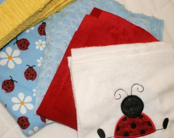 Playful Little Ladybugs Cuddly Minky Blanket Kit