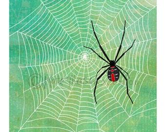 Red Back Spider Web ART PRINT Australian Arachnids
