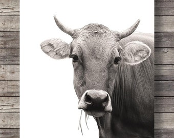 Cow art print Printable art Cow face Sepia Cow photo Printable wall art Farm Cow decor printable animals decor jersey cows black and white