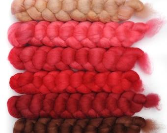 Hand dyed roving -  Blue Faced Leicester (BFL) wool spinning fiber - 6.5 ounces - Borscht