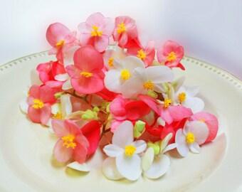 50+ Organic, Real EDIBLE MIXED BEGONIAS, Fresh or Candied , Pink, Peach, Yellow, White, Cream, Flowers, Bulk, Cupcakes, Wedding Cakes,