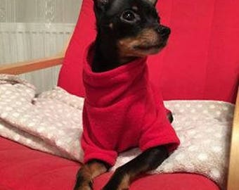 Red soft and warm woolen jumper for dog.
