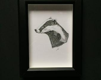 Badger- Original Drawing