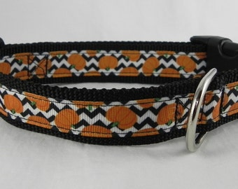 Chevron Pumpkin Dog Collar