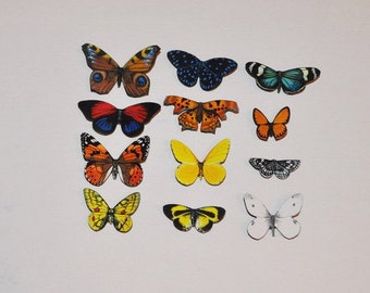 Butterfly Magnets, Refrigerator Magnets, Set of 12 Insects, Kitchen Decor, Home Decor, Multi Color, Kitchen Magnets, Gifts