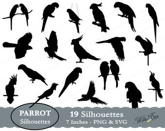 Parrot SVG, Parrot Silhouette Clip Art, Psittacines, Talking Bird, Bird, Parrot Image, Curved Beak, Bird Seed, Flying Bird, Instant Download