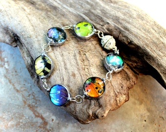 Real Butterfly Wing Bracelet, Multiple Butterfly Wings, Round Domed Glass Bracelet