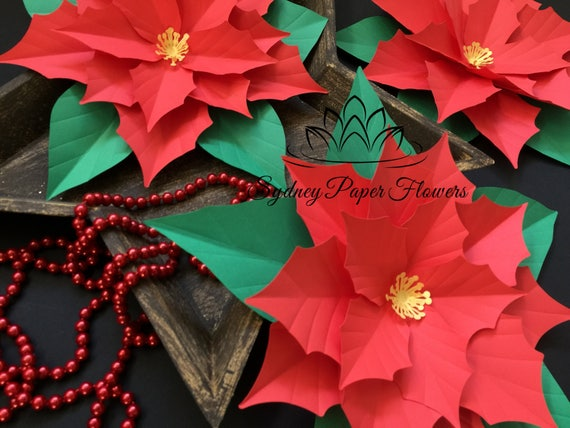 Paper Poinsettia Flower Template Urgup Kapook Co