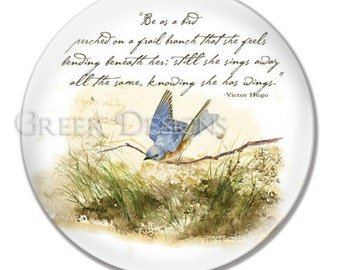 Bluebird Bird on a Branch Victor Hugo Inspirational Hope Poem Quote Melamine 8 or 10 inch Art Plate with or wo Personalized