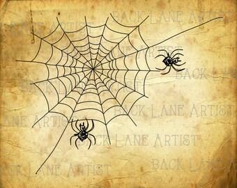 Spider Web Clipart Lineart Illustration Instant Download PNG JPG Digi Line Art Image Drawing H023