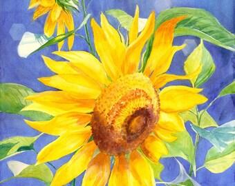 Sunflower giclee art print