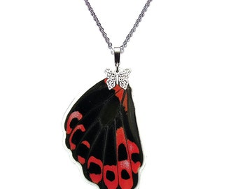 Real Butterfly Wing Necklace (Papilio Rumanzovia Hindwing - N049)