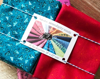 STUDIO 37 FABRICS Bring On the Bubbly 18 piece full collection Fat Quarter Bundle by Sarah J Maxwell