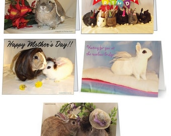 Pack of 5 Greeting Cards.