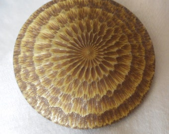 Large VINTAGE Carved Sun Rays Celluloid Coat BUTTON