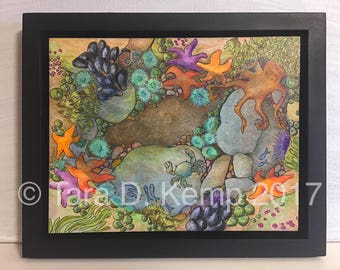 Tidepool - Glicee print of an original pen and watercolor painting - 8 x 10 - framed