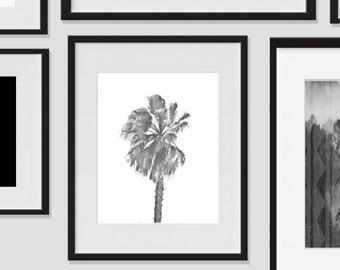 Wall Print Art, Palm Tree Art, Palm Tree Decor, 8x10, Hawaiian, Tropical, Island, Wall Decor, Black and White, Modern, Photography