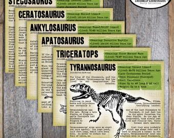 Dinosaur party Etsy