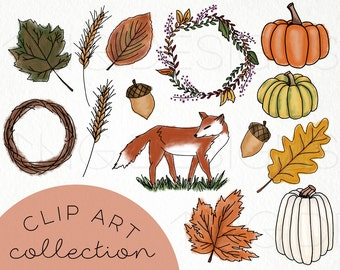 Fall Harvest Hand Drawn Clip Art PNG files Doodles Digital Download Fox Autumn Leaves Pumpkin Wreath Watercolor Rustic ClipArt Acorn Orange