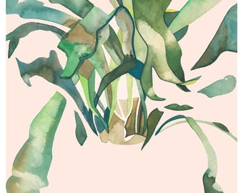 STAGHORN 2 12x16 (Giclée Print of Original Watercolor Painting Illustration Wall Art Home Decor Gift Staghorn Fern Houseplant)